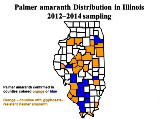 Palmer amaranth distribution May 2015