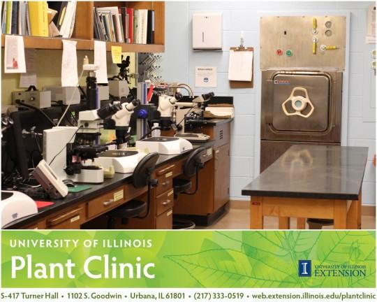 U of I Plant Clinic Diagnostic Lab